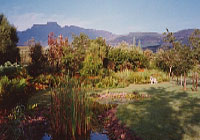 The garden and view at Inkosana Lodge
